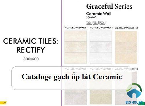 Catalogue gạch ceramic Prime, Đồng Tâm, Mikado… mới nhất