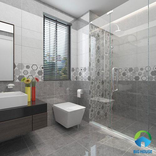 mâu gạch toilet 30x60
